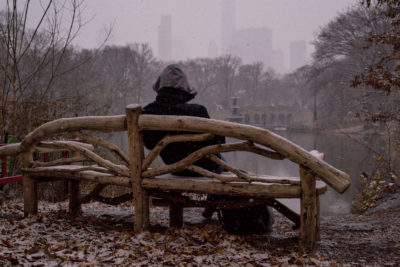 Brief respite in the Central Park snow